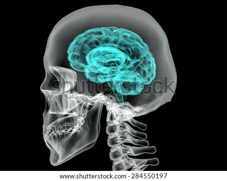 Concept of an Active Human Brain on a Dark Background Vector - stock vector