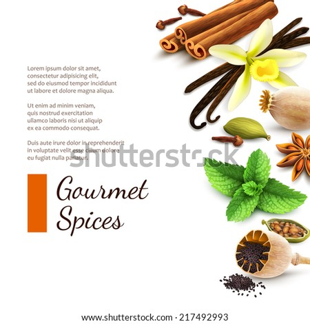 Confectionery gourmet spices food product decorative elements on white background vector illustration - stock vector