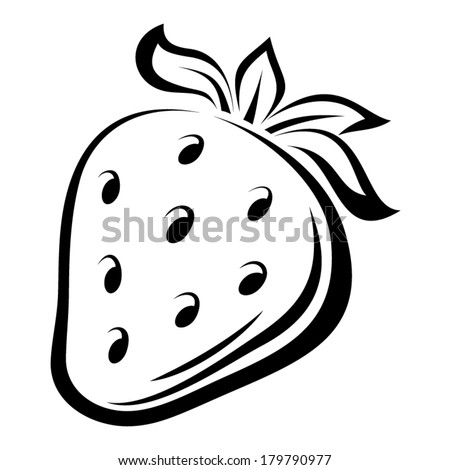 Contour drawing of strawberry. Vector illustration. - stock vector