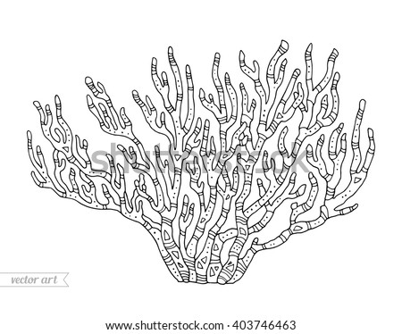 Coral isolated, coral reef. Vector illustration. Zentangle coral. Coloring book page for adult. Hand drawn artwork. Coral reef concept, ocean coral for card, ticket, branding, logo label. Black, white - stock vector