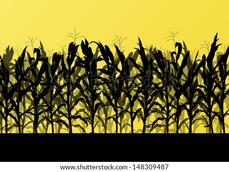 Corn field detailed countryside landscape illustration background vector - stock vector