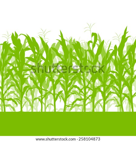 Corn field vector background ecology green concept - stock vector