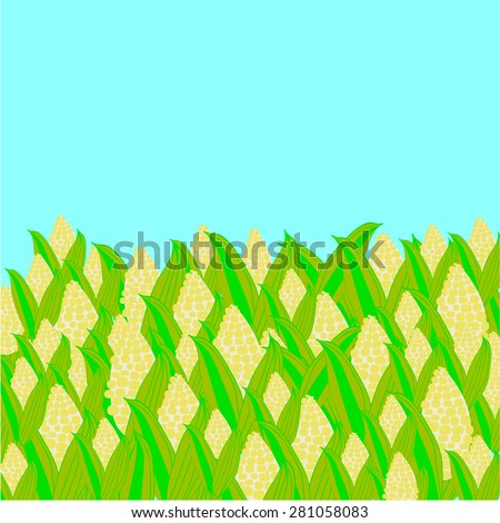 Corn Field. Vector Illustration of Harvest - stock vector