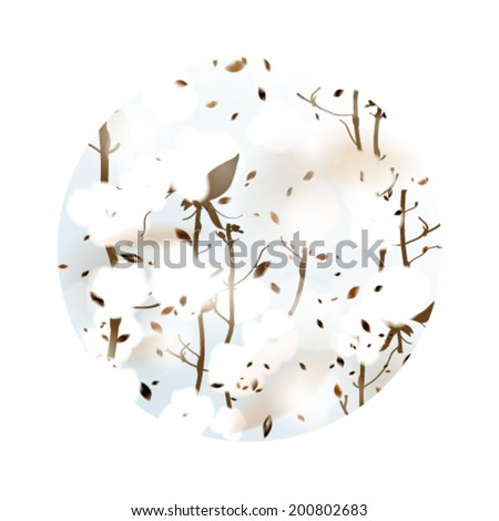 COTTON / Square card with fluffy flowers  - stock vector