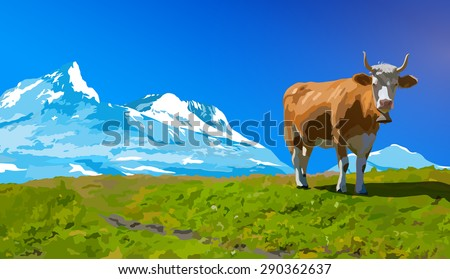 Cow on high meadow on snow mountains background. - stock vector