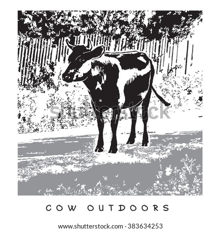 Cow Outdoors. Vector Image. Illustration in gray, black and white colors. - stock vector