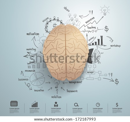 Creative brain with drawing business success strategy plan idea, Inspiration concept modern design template workflow layout, diagram, step up options, Vector illustration - stock vector
