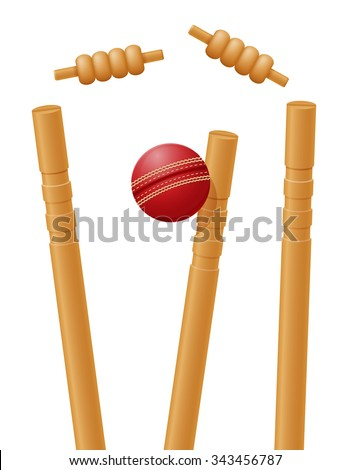 cricket ball caught in the wicket vector illustration isolated on white background - stock vector