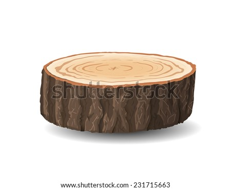 Cross section of tree stump, vector illustration, isolated on white background - stock vector