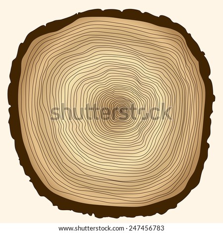 crossection of tree trunk, cut stump, wooden cut texture - vector illustration, you can easily change the color and size - stock vector
