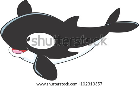 Cute Baby Killer Whale - stock vector