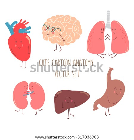Cute cartoon anatomy vector set with funny organs, heart, brain, lungs, kidneys, liver and stomach.  - stock vector