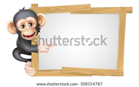 Cute cartoon chimp monkey like character mascot peeking around a sign and pointing at it - stock vector