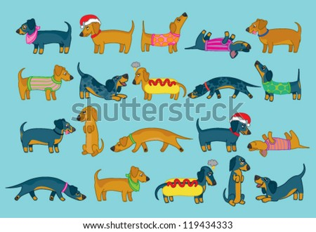 Cute collection of different kinds of sausage dogs or dachshunds - stock vector
