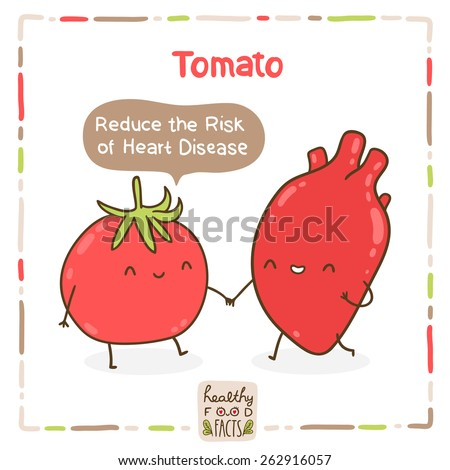 Cute vector tomato and human heart. Healthy food fact. - stock vector