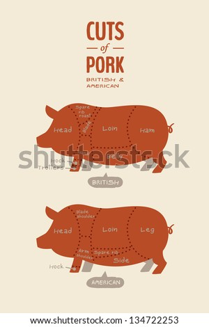 Cuts of Pork - stock vector