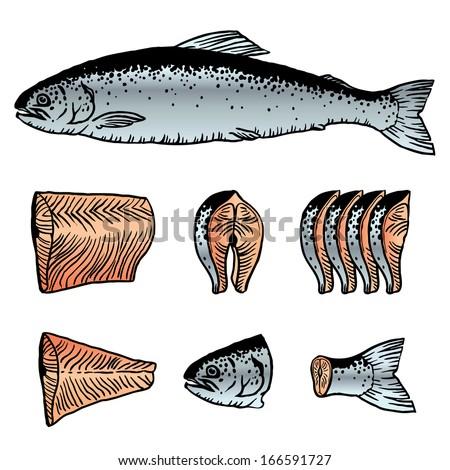 Cutting Fish Salmon - stock vector