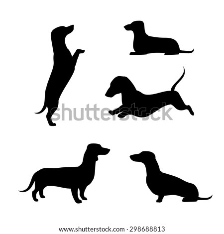 Dachshund vector icons and silhouettes. Set of illustrations in different poses. - stock vector