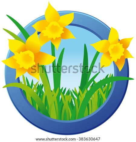Daffodils in green grass in blue round frame; Spring motif; Illustration - stock vector