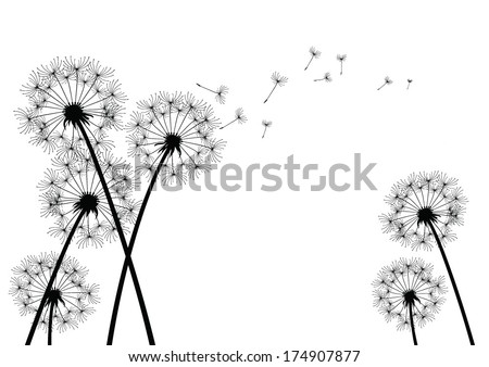 dandelion background - stock vector