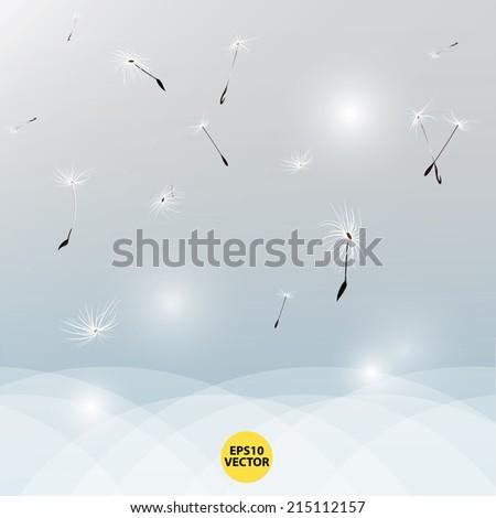 Dandelion in the wind vector - stock vector