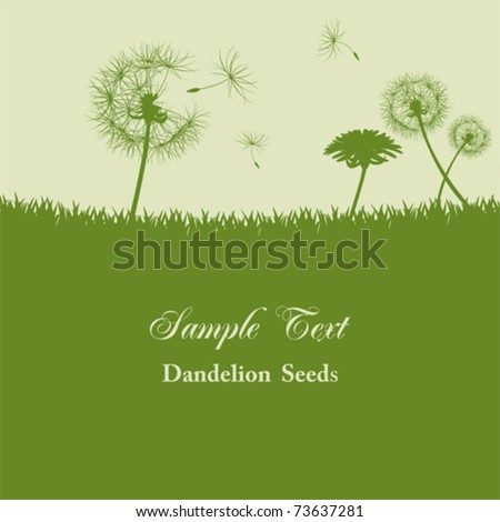 Dandelion seeds background. Illustration vector. - stock vector
