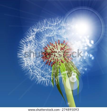 Dandelion seeds blown in the blue sky. - stock vector