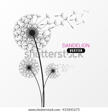 Dandelion silhouette. Flying dandelion buds. Modern design. Vector illustration - stock vector