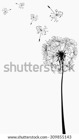 dandelion silhouette in the wind - stock vector