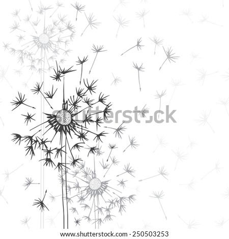 Dandelions . Hand-drawn floral background,  monochrome vector illustration. Stylish greeting card or invitation. - stock vector