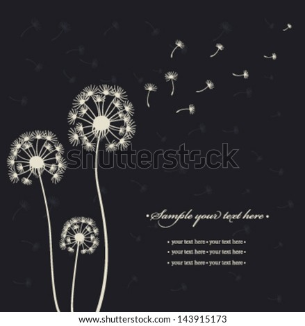 Dandelions on the black background. Vector - stock vector