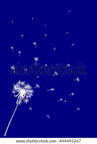 Dark blue dandelion background.   - stock vector