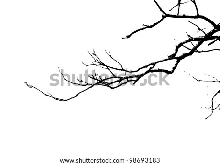 Dead branches - stock vector