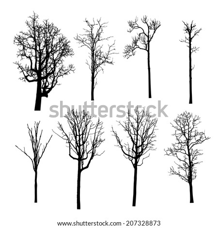 Dead Tree without Leaves Vector Illustration Sketched - stock vector