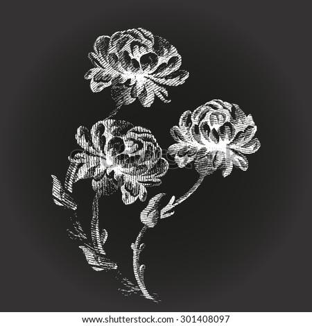 Decoration print floral petal vector element drawing black touch elegant illustration stem artwork collection texture garden design paper art peony ornate vintage background branch isolated flower  - stock vector