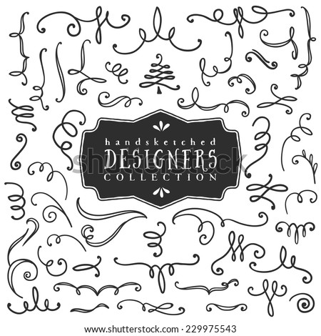 Decorative curls and swirls. Designers collection. Hand drawn illustration. Design elements. - stock vector