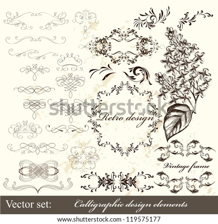Decorative elements for elegant design. Calligraphic vector - stock vector