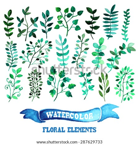 Decorative watercolor floral branches, design elements. Can be used for wedding, baby shower, mothers day, valentines day cards, invitations - stock vector