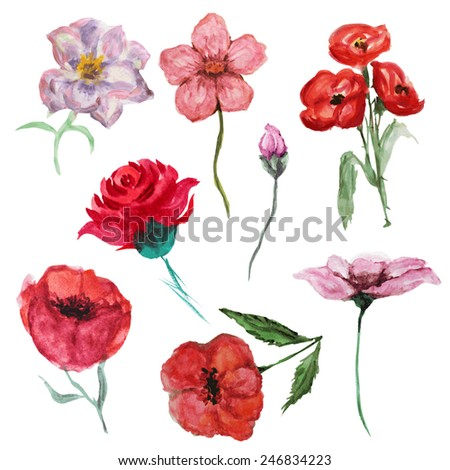Decorative watercolor flowers set, design elements. Can be used for wedding, baby shower, mothers day, valentines day cards, invitations. Painted flowers - stock vector