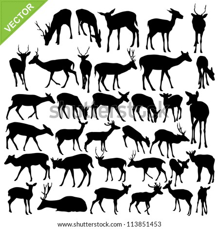 Deer silhouettes vector collections - stock vector