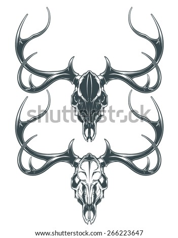 Deer Skull - stock vector
