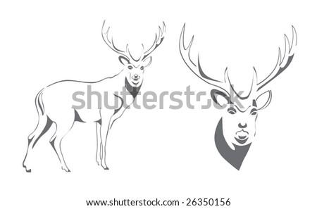 deer wildlife antler hunt wood - stock vector