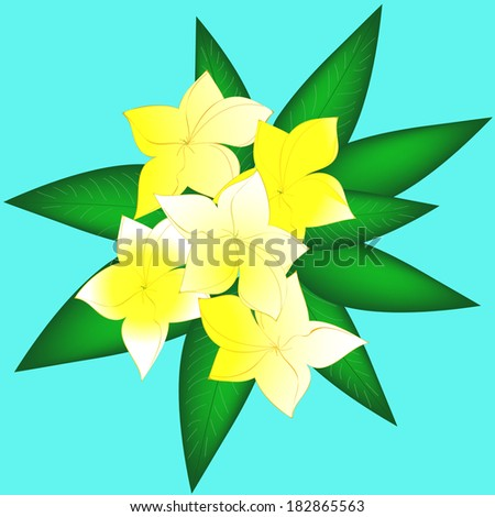 Delicate yellow spring flowers. - stock vector