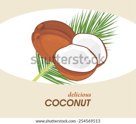 Delicious coconut. Label for design. Vector - stock vector