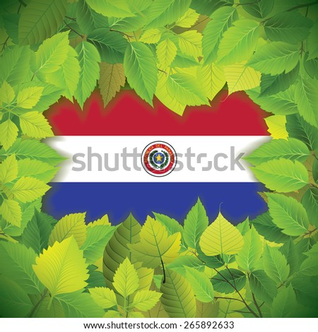 Dense, green leaves over the flag of Paraguay - stock vector