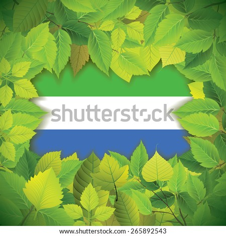 Dense, green leaves over the flag of Sierra Leone - stock vector