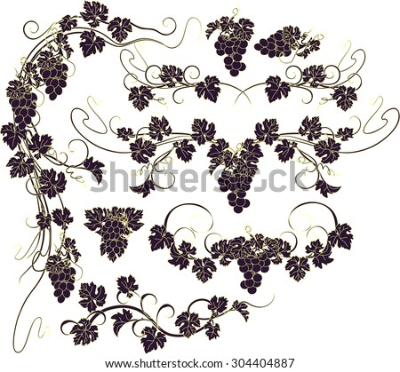 Design elements with bunches of grapes and vines in vintage style. - stock vector