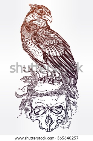 Detailed hand drawn bird of prey on a skull. - stock vector