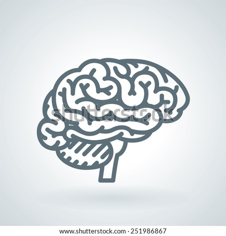 Detailed Human Brain Line Icon - stock vector