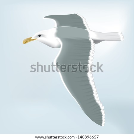 Detailed vector drawing of a seagull/Seagull/ Easy to edit layers, meshes and gradients used - stock vector